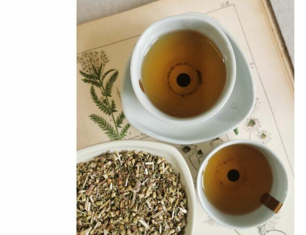 Schafgarbe TCM Tee Kräuter Hausapotheke