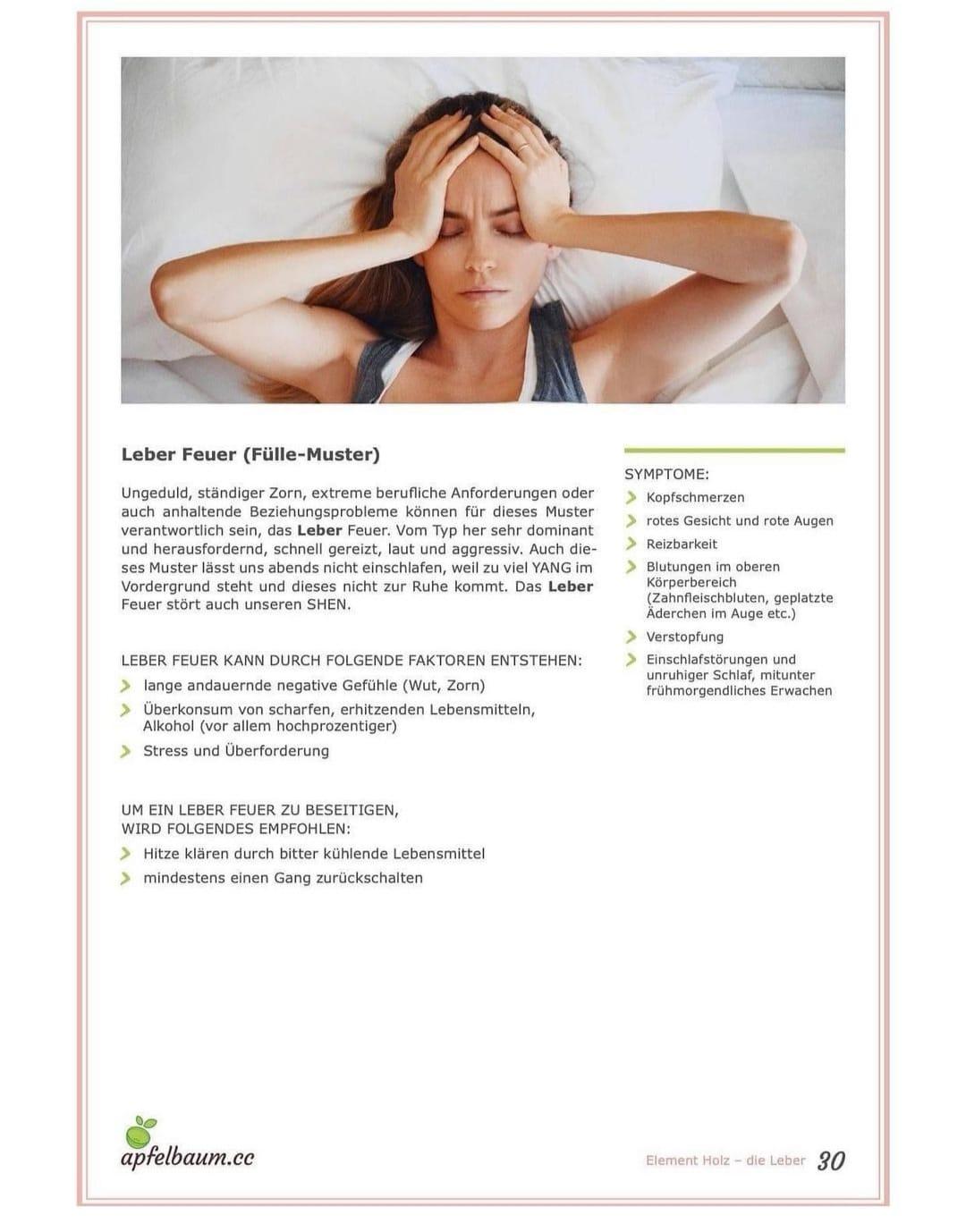 TCM Einschlafstörungen Schlafstörung Coaching Apfelbaum Booklet